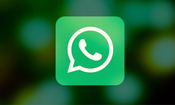 WhatsApp stummschalten - WhatsApp-Gruppenchat - WhatsApp-Chat - WhatsApp-Funktionen
