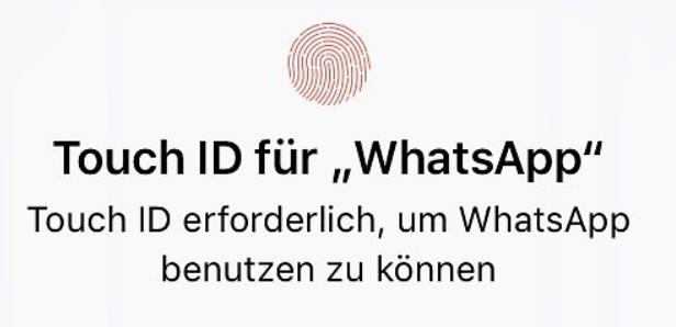 Screenshot des Fensters, wenn man Touch ID oder Face ID aktiviert hat. Foto: Screenshot