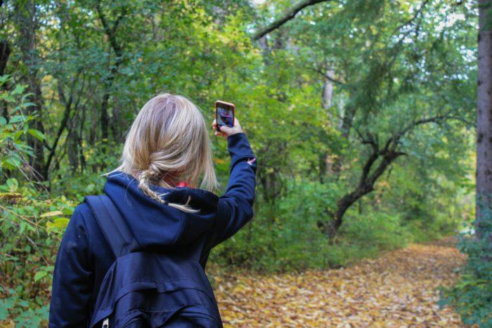 """Fotos mit """"Ihr Smartphone"""" auf dem PC absichern"""