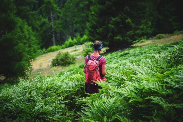 Das Bild zeigt eine Frau, die durch einen Wald wandert. Für die Navigation nutzt Sie eine Wander-App. Bild: Unsplash/Klaus Huber