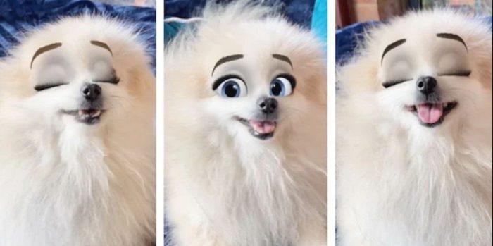 Drei Screenshots eines Hundes mit Disney-Augen dank Snapchat-Filter. Bild: © techadvisor.co.uk