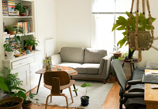 Urlaub online buchen: Blick in eine Wohnung mit Sofa, Couchtisch, Regal und Pflanzen. Bild: Unsplash/Patrick Perkins