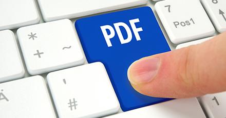 PDF ion JPEG umwandeln